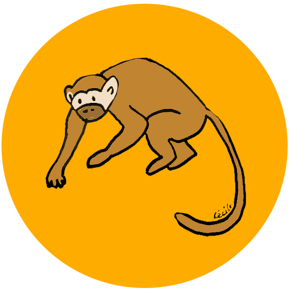 singe orange lâcher-prise